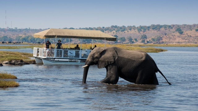 Chobe - top safari parks in Africa